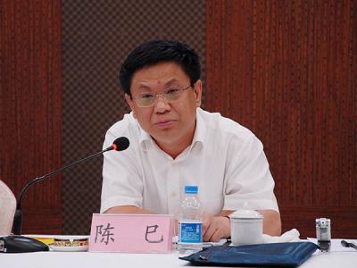长春市人民政府副市长  陈 巳照片