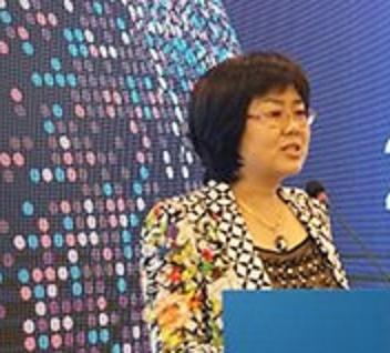 中国人民银行金融信息中心处长袁慧萍