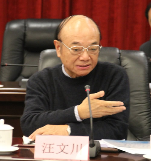 北京化工大学教授汪文川