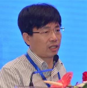 杭萧钢构股份有限公司总工程师杨强跃照片