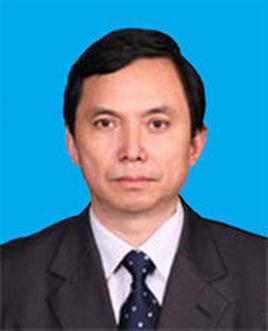 北京市市政府副市长卢彦照片