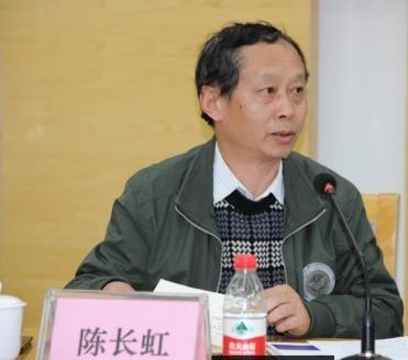 上海市环境科学研究院副总工程师陈长虹照片