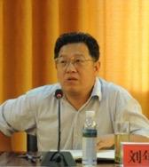 共青团中央副处长刘年艳照片