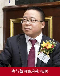 当代置业(中国)有限公司总裁张鹏