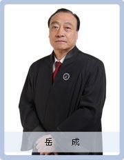 北京岳成律师事务所创办人岳成