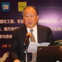 中国石油和化学规划院院长顾宗勤照片