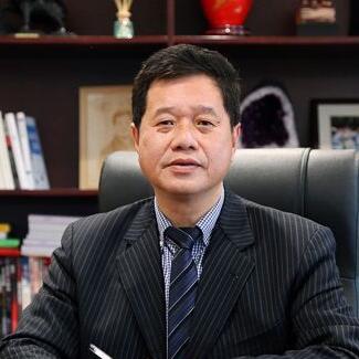 国美电器集团高级副总裁何阳青