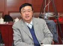 北京大学国际经济研究所所长王跃生照片