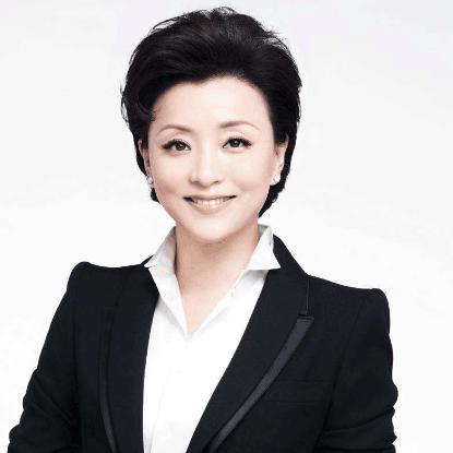 北京电视台著名主持人杨澜照片