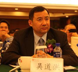 中国节能协会节能服务产业委员会 主任委员吴道洪照片