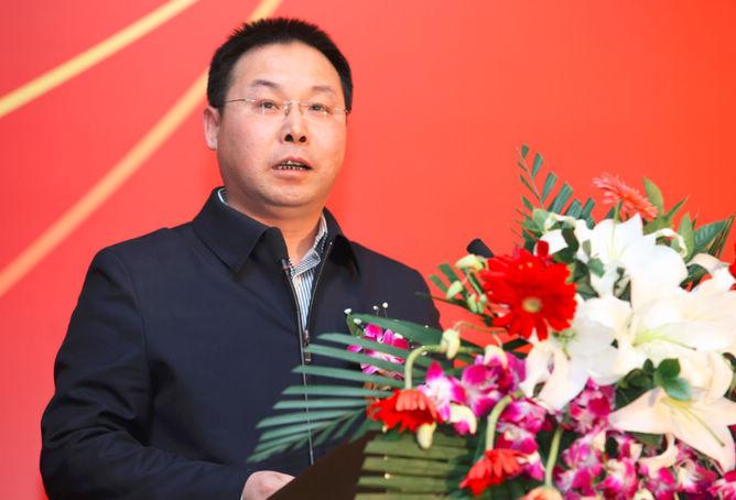 工信部信息化和软件服务业司副司长陈英照片