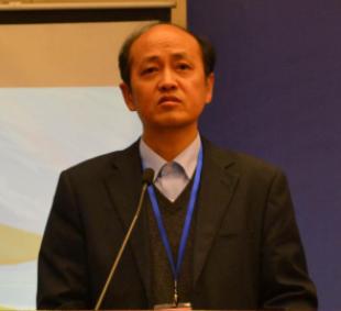 中国电池工业协会副秘书长曹国庆照片
