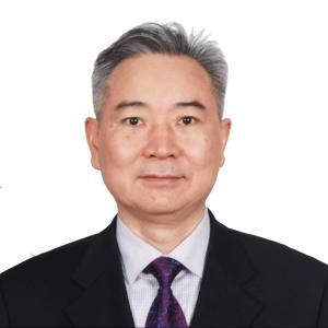 中国国际经济交流中心副总经济师徐洪才