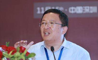 国家安全生产监督管理总局信息研究院所长王鹏 照片