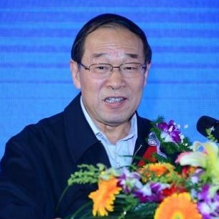 中国房地产业协会会长刘志峰照片