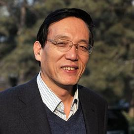 国务院发展研究中心副主任刘世锦照片
