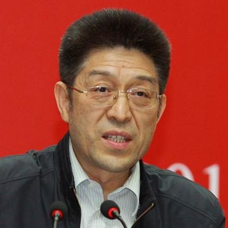 国家商务部电子商务和信息化司副司长聂林海照片