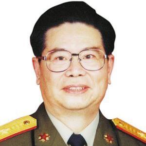 中国国际战略学会高级顾问王海运