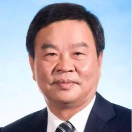 湖南省人民政府副省长何报翔照片