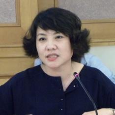 深圳市新材料产业协会秘书长李音照片