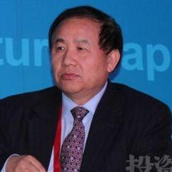 中国卫生部卫生发展研究中心主任张振忠照片