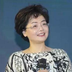 北京赛诺水务科技有限公司董事长吴红梅
