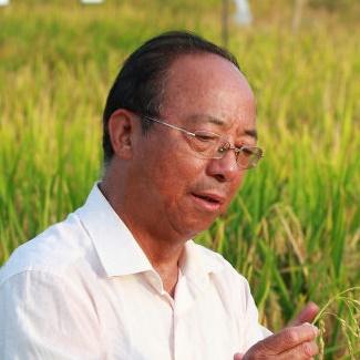 福建省农业科学院院士谢华安照片