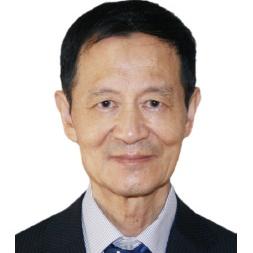 中国国际贸易学会中美欧研究中心主席何伟文照片