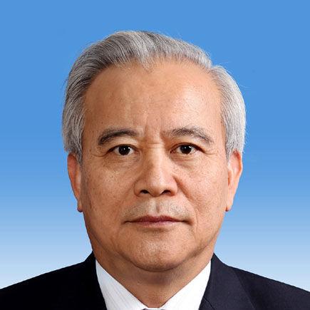 十二届全国政协副主席王钦敏照片