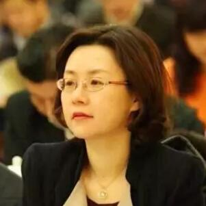 中国出入境检验检疫协会副秘书长郭京照片