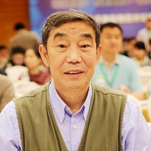 中国电子商务物流企业联盟名誉会长达瓦照片