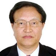 中国产业海外发展和规划协会会长张国宝照片