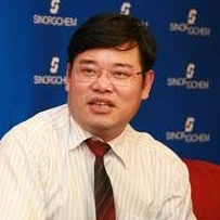 江苏圣奥化学科技有限公司研发副总裁陈新民照片