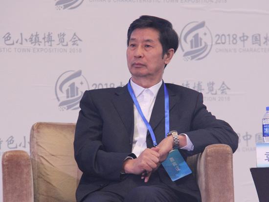 中国开发性金融促进会副会长袁英华