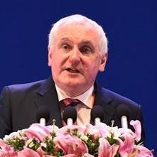 国际行动理事会联合主席伯蒂·埃亨 照片