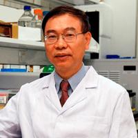 澳门大学健康科学学院院长邓初夏照片