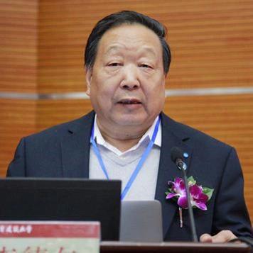 中國科學院院士李德仁照片