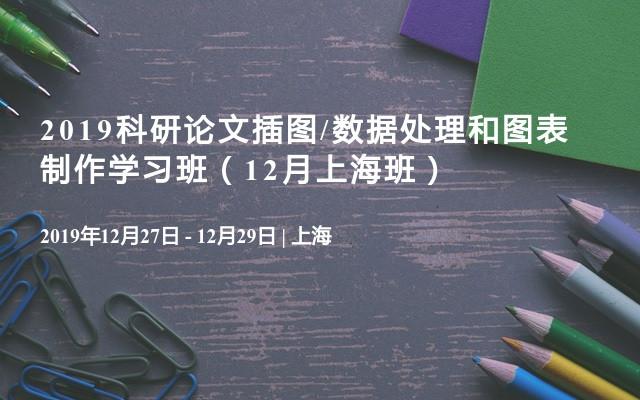 2019科研論文插圖/數據處理和圖表制作學習班(12月上海班)