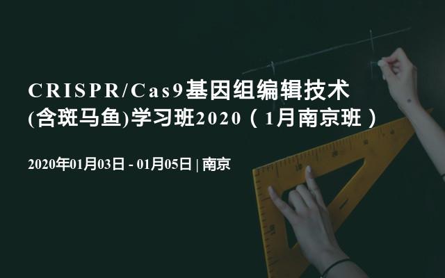 CRISPR/Cas9基因組編輯技術(含斑馬魚)學習班2020(1月南京班)