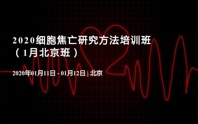 2020细胞焦亡研究方法培训班(1月北京班)