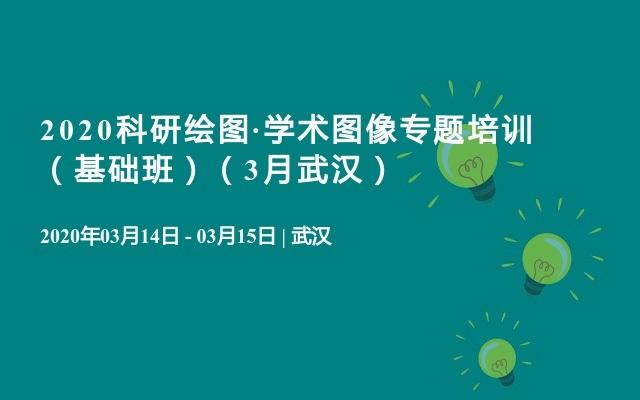 2020科研绘图·学术图像专题培训 (基础班)(3月武汉)