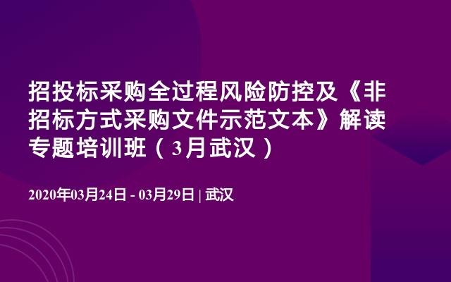招投标采购全过程风险防控及《非招标方式采购文件示范文本》解读专题培训班(3月武汉)