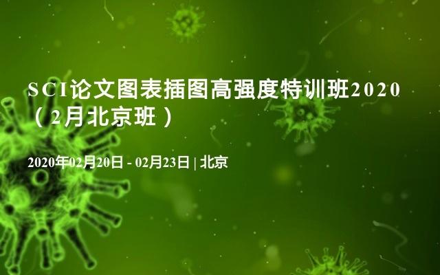 SCI论文图表插图高强度特训班2020(2月北京班)