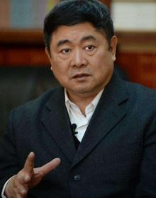 北京故宫博物院院长单霁翔照片