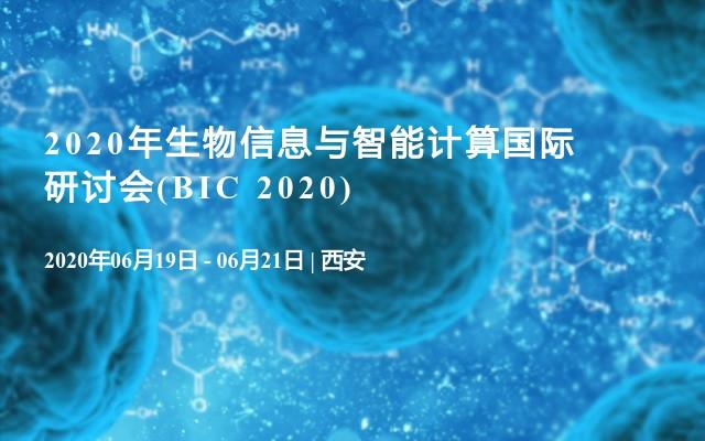2020年生物信息與智能計算國際研討會(BIC 2020)