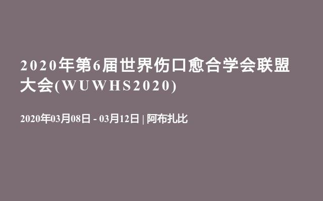 2020年第6届世界伤口愈合学会联盟大会(WUWHS2020)