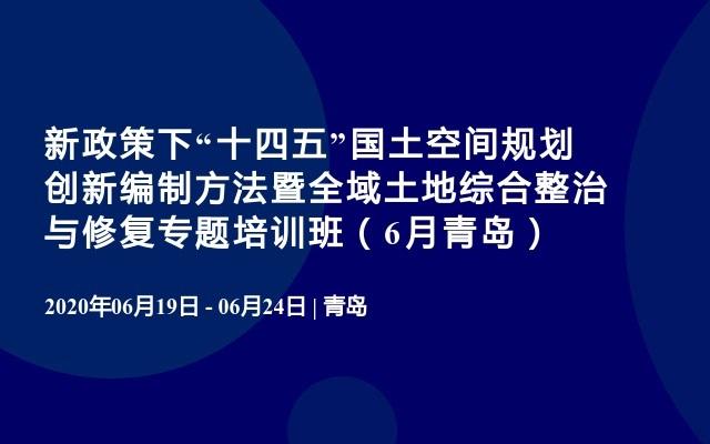"""新政策下""""十四五""""国土空间规划创新编制方法暨全域土地综合整治与修复专题培训班(6月青岛)"""