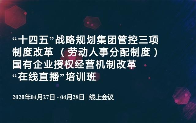 """""""十四五""""战略规划集团管控三项制度改革 (劳动人事分配制度)国有企业授权经营机制改革""""在线直播""""培训班"""