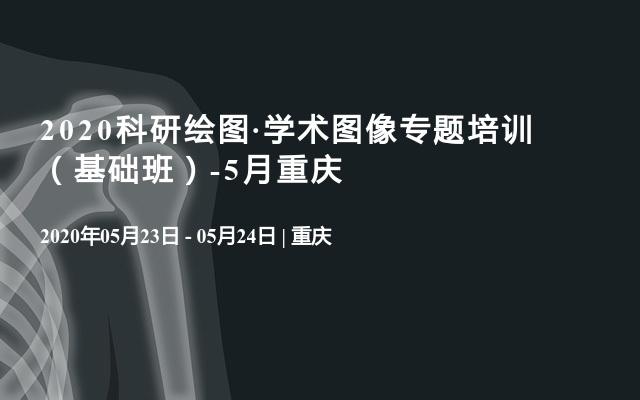 2020科研绘图·学术图像专题培训  (基础班)-5月重庆