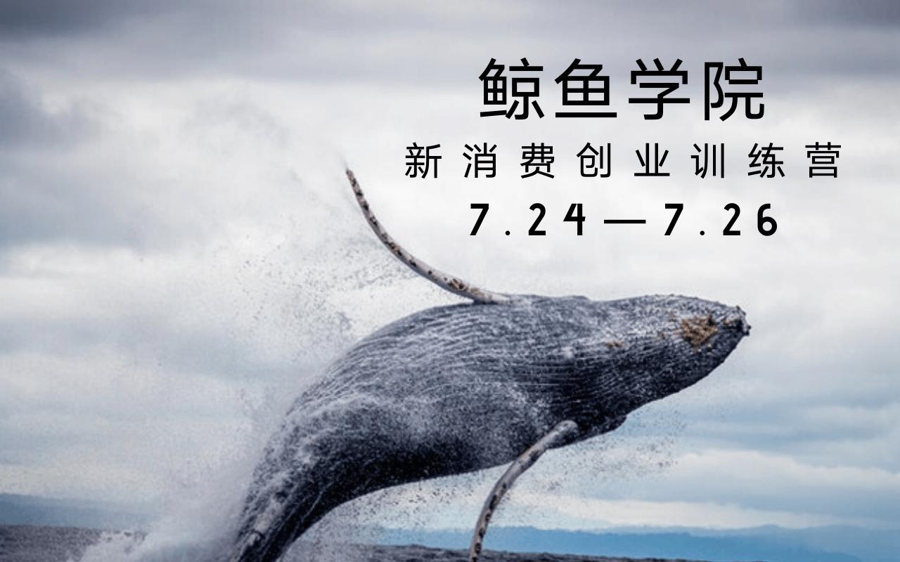 鲸鱼学院新消费创业训练营